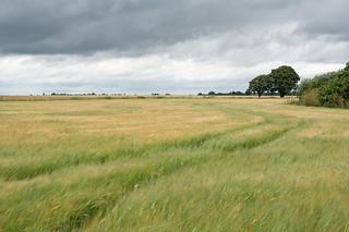 Near Arlesey