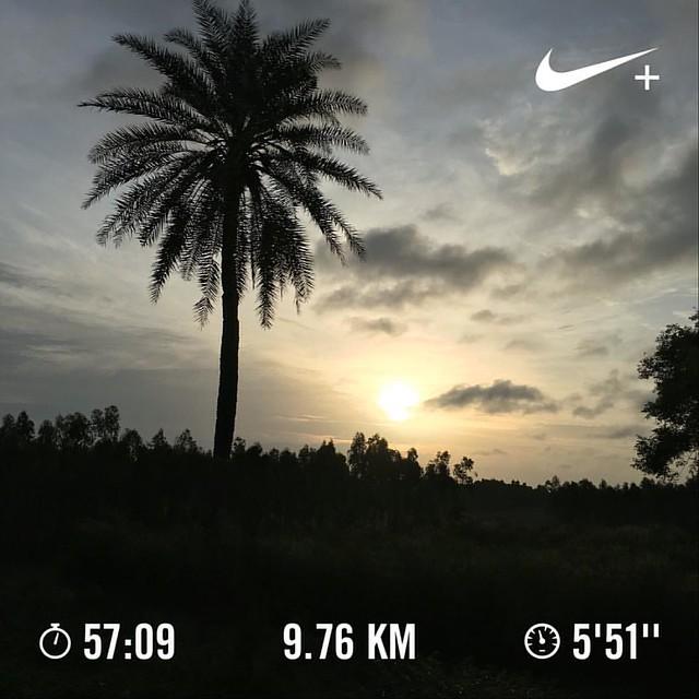 Bangalore Half Marathon training day #39. Easy, comfortable pace. #nikeplus #nikerunning #werun2016 #werunkalaburagi #hmtraining #nature #nofilter