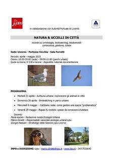 Natura e uccelli in città
