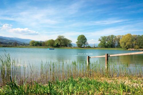 15/52 - break at the lake, spring season