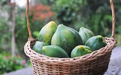 Papaya in basket at market