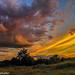 Kentucky Summer sunset. by Ulrich Burkhalter