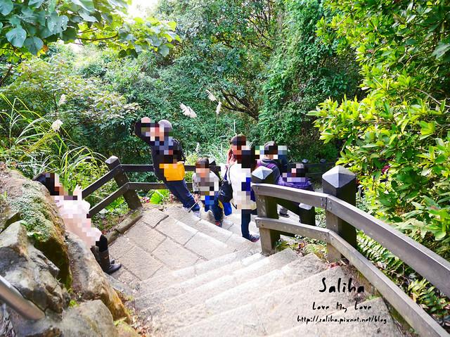 台北登山爬山象山步道 (6)