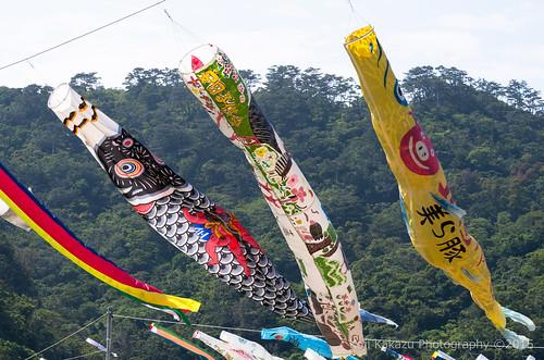 奥ヤンバル鯉のぼり祭り-73