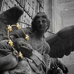 Langennut EU-enkeli