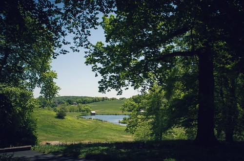 nature gardens museum garden de pond view meadow vista delaware wilmington dupont winterthur winterthurmuseumandgardens