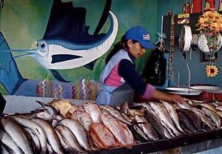 ecuador seafood