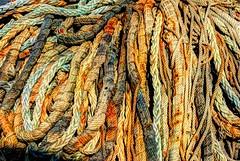 Rope Waves