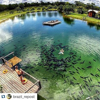 My theory: the #gardenofeden was located in #brazil . #bonito #matogrossodosul #brazilian #brasil  #Repost @brazil_repost ・・・ Bonito - MS por @renilson_campos. 🔁 ֹ