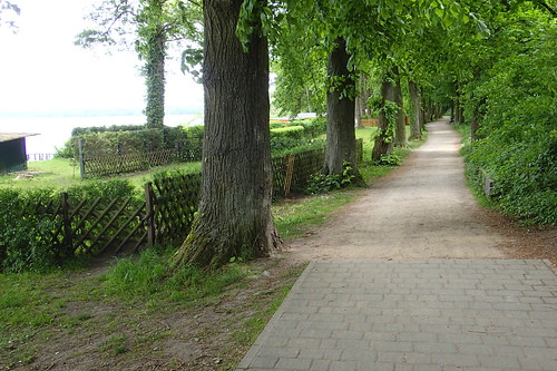 Path at Arendsee
