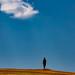 Alone #1 by Stefania Pascucci