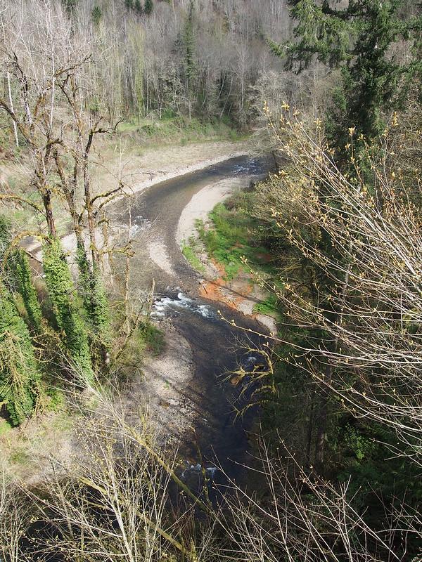 South Prairie Creek: OLYMPUS DIGITAL CAMERA