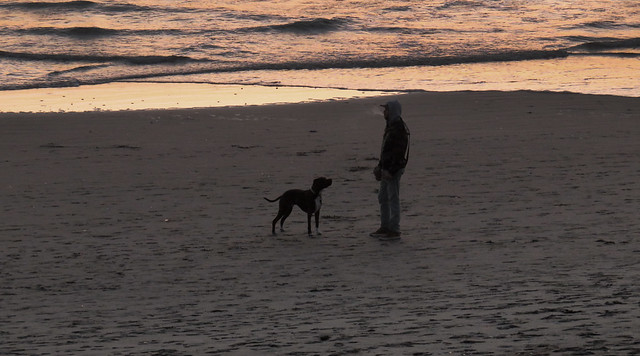 Man with dog, beer and cigarette on Ocean Beach, San Francisco.  April 8, 2015