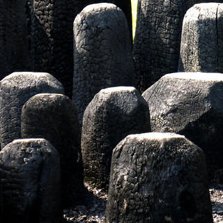 (N)ash stumps