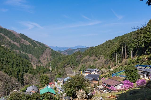登山口より振り返り・・・赤谷集落と遥か両神山