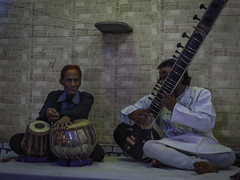 sitar, plucked string instruments, string instrument, folk instrument, string instrument,