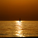 lonely sailboat in a golden sea by Lior. L