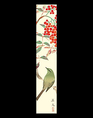 Heavenly bamboo and Japanese bush-warbler