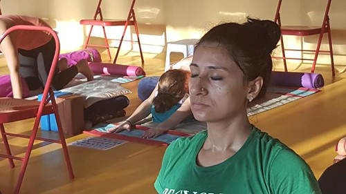abhijna school of yoga ashtanga and yoga therapy teacher training march 2016 (1577) (Copy)