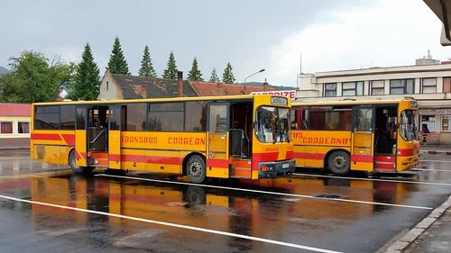 sibiu romania county busses bus public transport romanian austria ostenreich