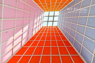 Coloured Ceiling Skylight