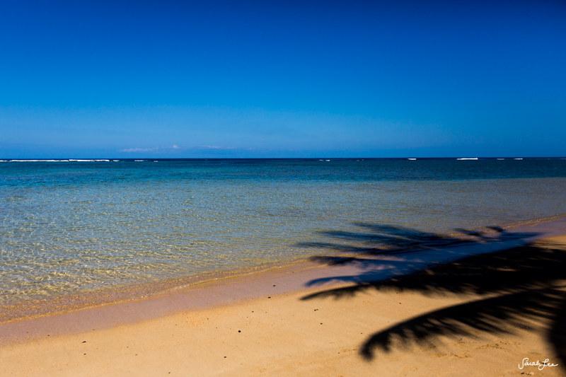 Kauai_Adventure_sarahleephoto_030