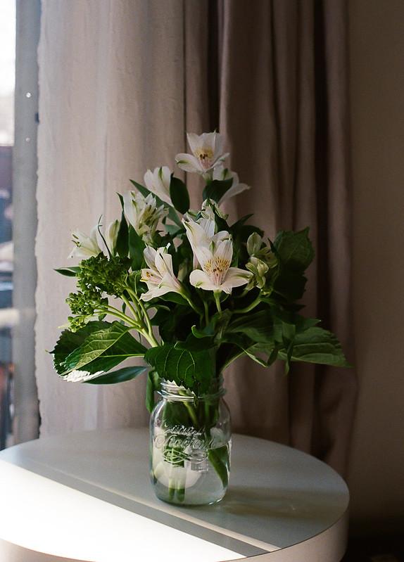 sunshine winter florals-inside