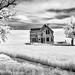 The Old West House by Matt Shiffler Photography
