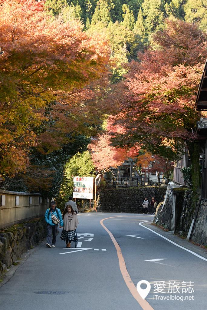 京都赏枫景点 高雄西明寺 40