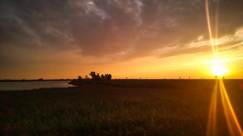 vanavond racefiets dijk water oostvaarderplassen oostvaardersdijk knardijk avond zon natuur nieuwewildernis wildernis nature landschap landscape sunset zonsondergang sensa umi mobile fotografie photography 2016