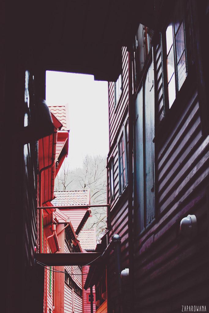 zaparowana.blogspot.com // Norway