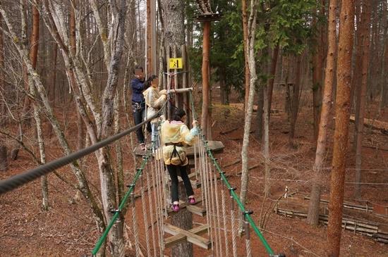 forestadventure8