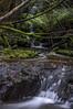 Featherstone Falls, kunanyi - Mt Wellington
