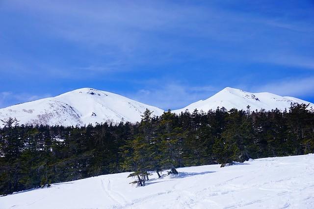 772e1663d1 ツアーコースからは早速乗鞍岳が見える。右の尖がったのが乗鞍岳の剣ヶ峰、左は高天ヶ原かな。