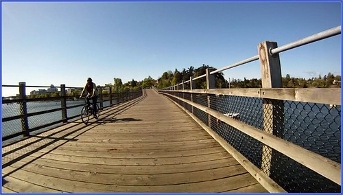 Selkirk Trestle Galloping Goose Trail