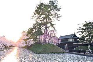 Sunset at Hirosaki Castle outer mote. 弘前城。© Glenn E Waters. Japan 2015.