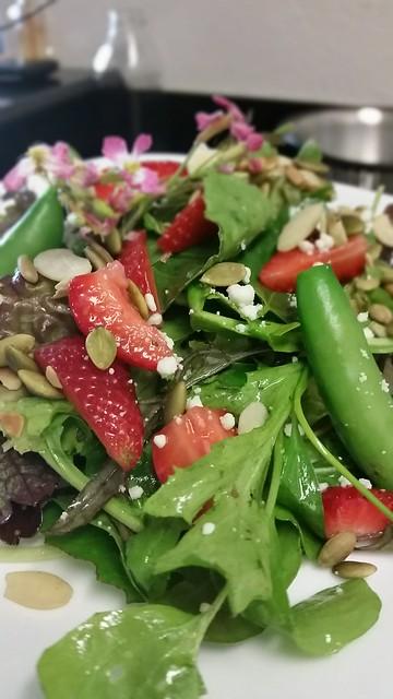 Farmer's market salad (test 1)