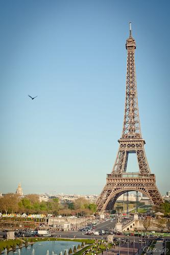 La tour Eiffel. Paris. Farnce