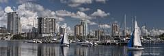 St Petersburg, FL City