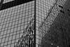 Mirror building by Koen Bazelmans