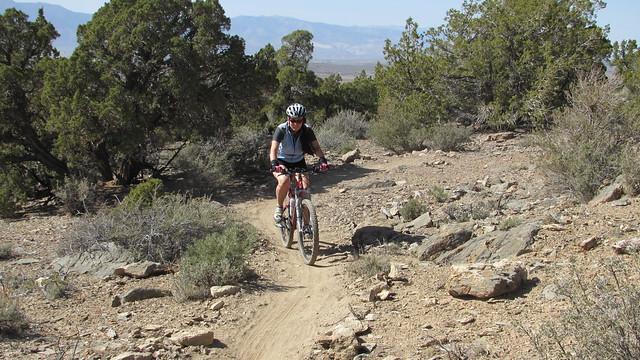 Pinyon Trail