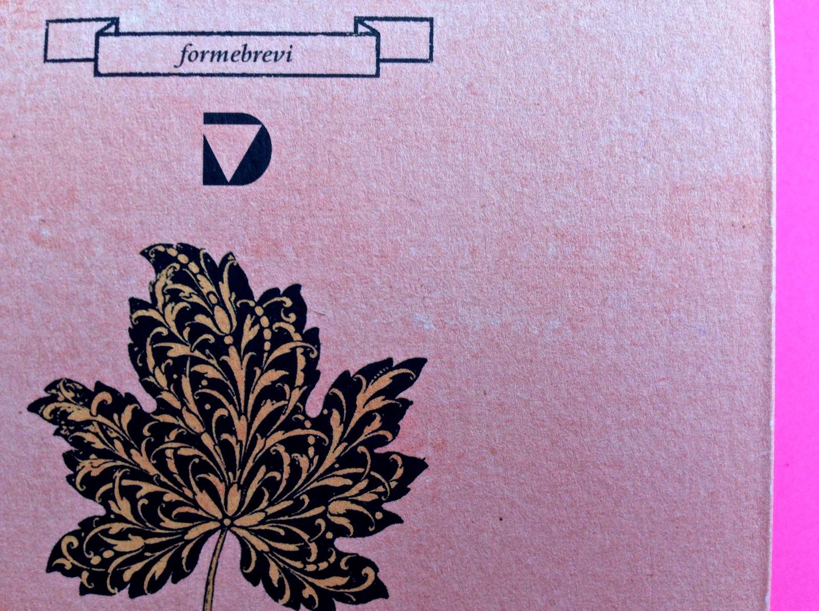 La stella del vespro, di Colette. Del Vecchio Editore 2015. Art direction, cover, illustrazioni, logo design: IFIX | Maurizio Ceccato. Copertina (part.), 3