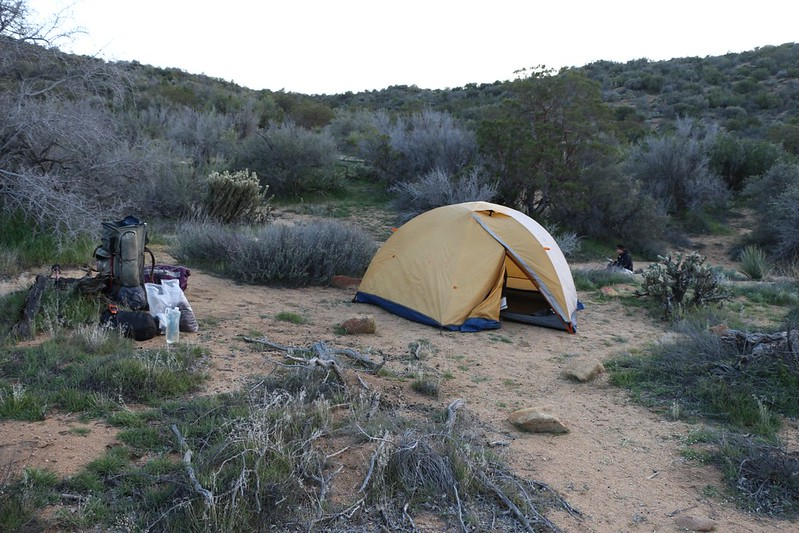 Our campsite on the PCT near mile 140