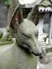 狐・kitsune (fox)