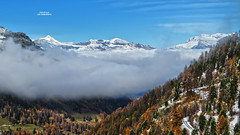 Les Diablerets - Valais - Suisse