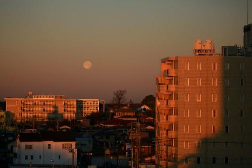 japan tokyo mitsukaido city buildings dawn light moonset sunrise mitsukaidoekimae
