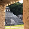 #Mayan ruins in #Palenque
