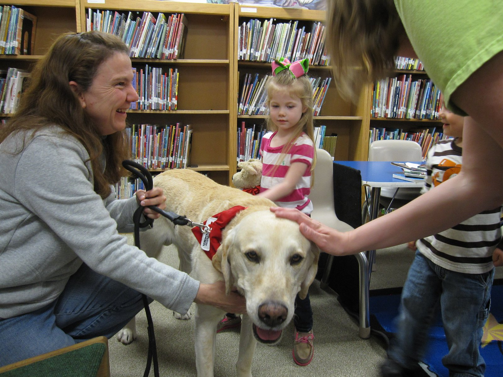 Therapy Dog Training West Palm Beach