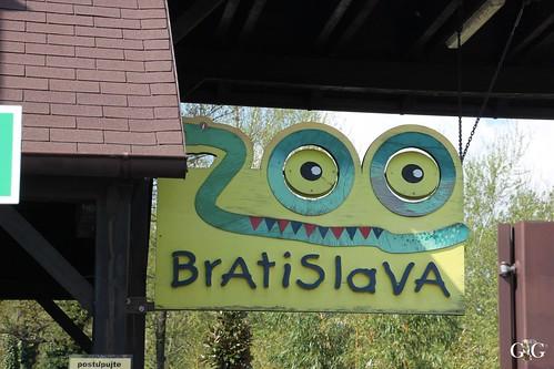 Zoo Bratislava 18.04.2015115
