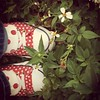 #red #polkadots #converse #wildflowers